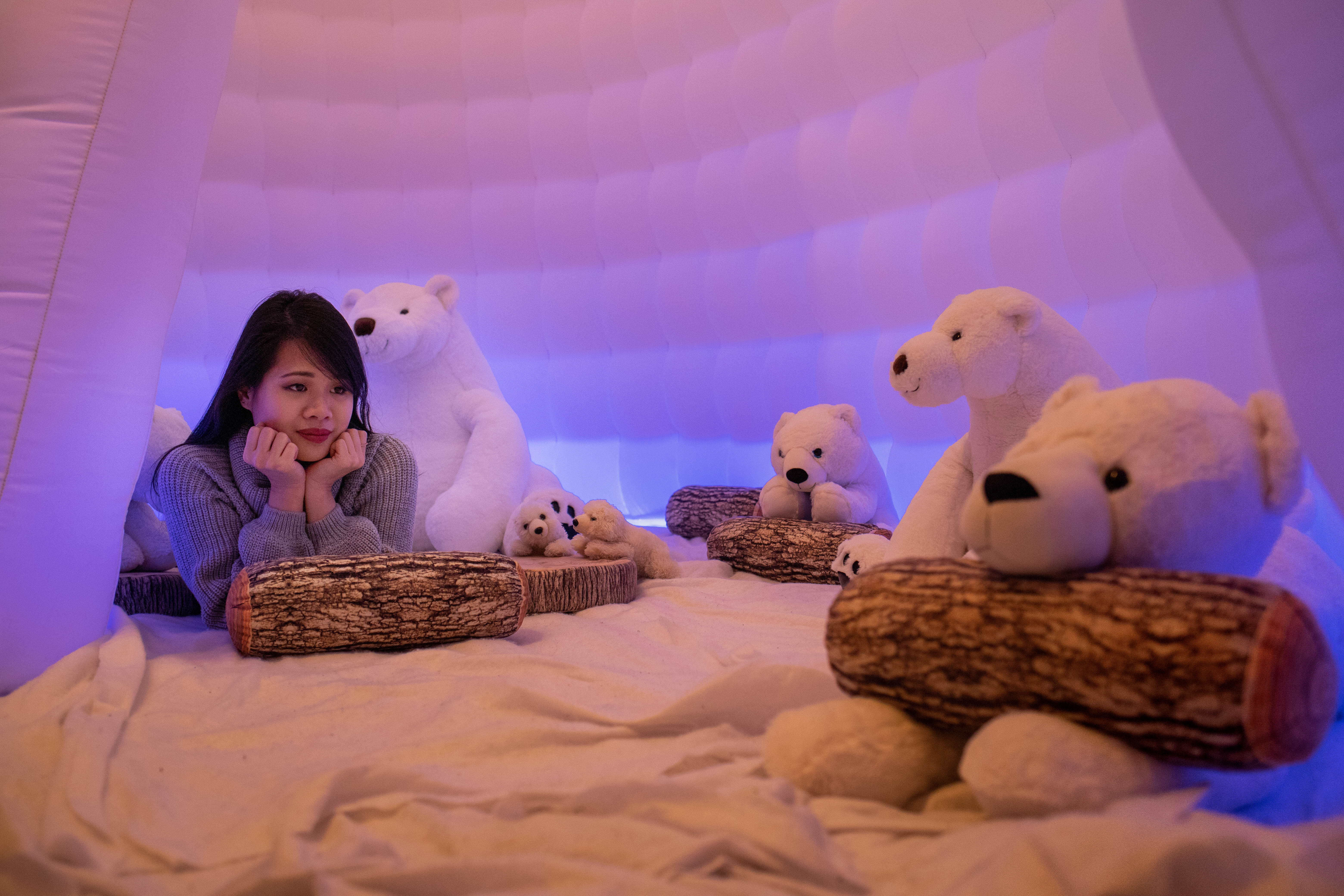 with polar bears at sugar and spice pop up in brooklyn